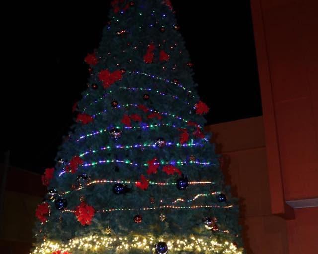Chañaral realizó encendido de su árbol de Navidad